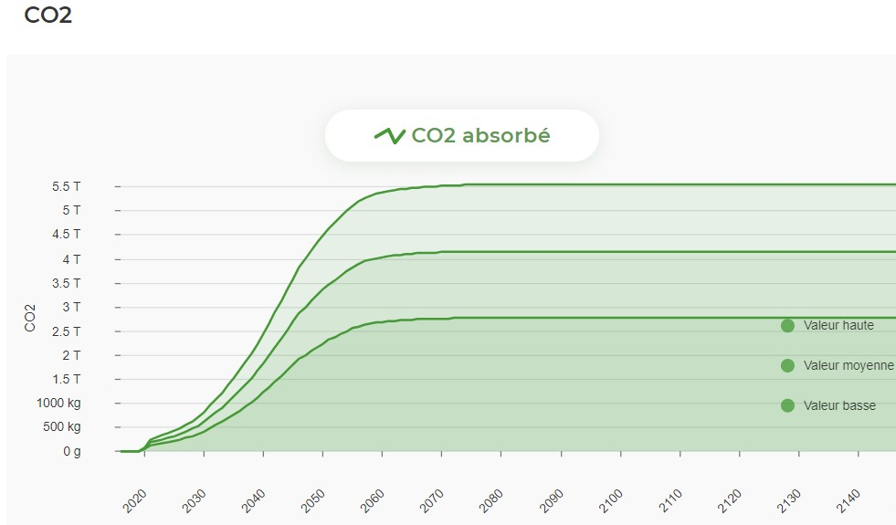 Absorption de co2 grace a EcoTree